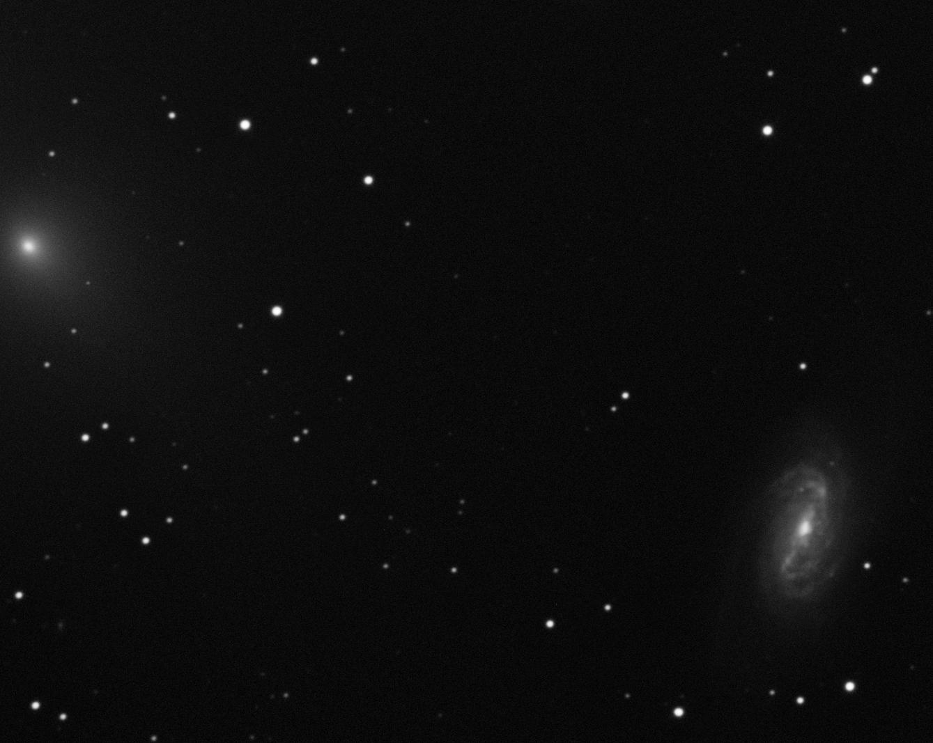 Comet C/2018 Y1 (Iwamoto)
